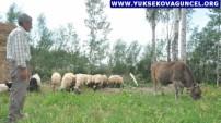 Yüksekova'da Hayat Normale Döndü