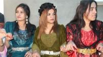 Yüksekova 25 Mayıs 2014 Düğünleri