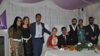 Yüksekova düğünleri 29-30 kasım 2014