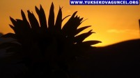 Yüksekova'da Gün Batımı Güzelliği