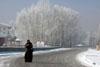 Yüksekova'da kış resimleri