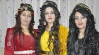 Yüksekova düğünleri (16-17-Mayıs 2015)