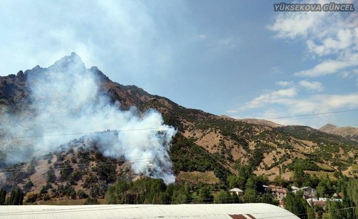 Şemdinli'de Orman Yangını