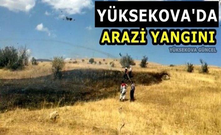 Yüksekova'da Arazi Yangını
