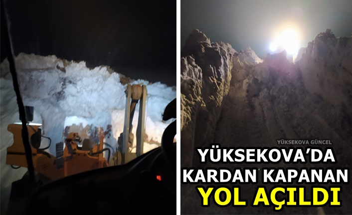 Yüksekova'da Kardan Kapanan Yol Açıldı