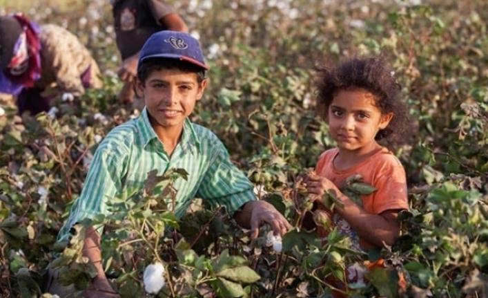 'Çocuk işçi'lerin sayısı 20 yıldır ilk kez arttı