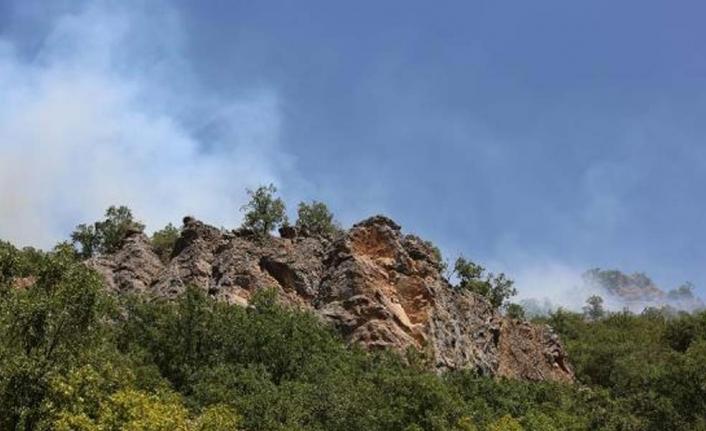 Munzur Vadisi Milli Parkı'ndaki yangın yeniden alevlendi