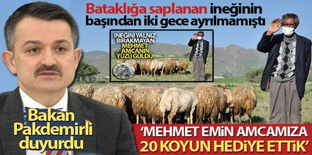 """Bakan Pakdemirli Haberimize Sessiz Kalmadı: """"Mehmet Emin amcamıza 20 koyun hediye ettik"""""""