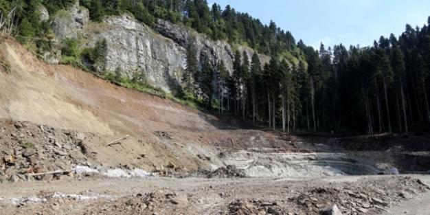 Cerattepe'de dereler gri akıyor, 2 bin 500 ağaç kesildi