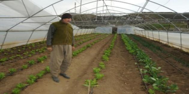 Şemdinli'de fırtına okulun çatısını uçurdu, seralara zarar verdi