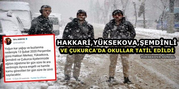 Hakkari,Yüksekova,Şemdinli Ve Çukurca'da Okullar Tatil Edildi