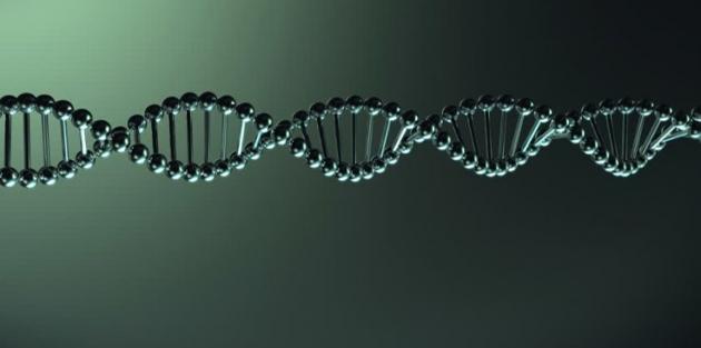 İnsan DNA'sı tamamen çözüldü