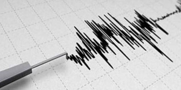 Muğla'da 4.8'lik deprem