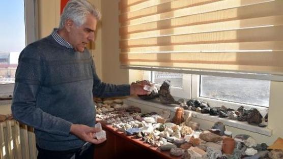 Profesörün odasında 500 milyon yıllık trilobit fosili