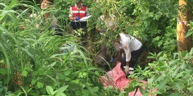 Sakarya'da 7 tarım işçisi yaşamını yitirdi