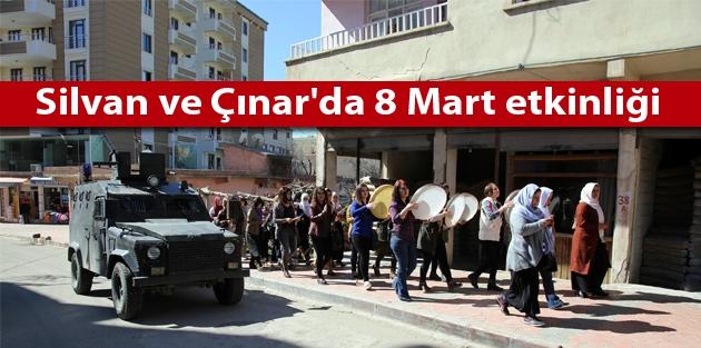 Silvan ve Çınar'da 8 Mart etkinliği