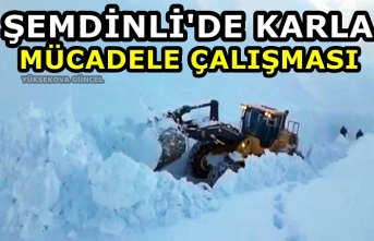 Şemdinli'de karla mücadele çalışması