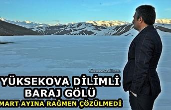 Yüksekova Dilimli Baraj Gölü, Mart Ayına Rağmen Çözülmedi