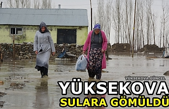Yüksekova sulara gömüldü