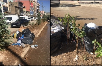 Başkan Çoğaç: Cengiz Topel CaddesininOrta Refüjüne Bırakılan ÇöplerKonusunda Uyarılarda Bulundu