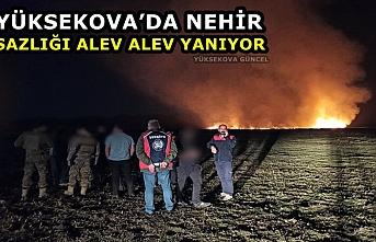 Yüksekova'da Nehir Sazlığı Alev Alev Yanıyor