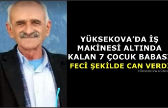 Yüksekova'da İş Makinesi Altında Kalan 7 Çocuk Babası Feci Şekilde Can Verdi