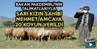 Bakan Pakdemirli'nin Talimatlarıyla Sarı Kızın Sahibi Mehmet Amcaya 20 Koyun Verildi