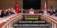 Diyarbakır Cezaevi'nin gardiyanı Meclis komisyonuna konuştu