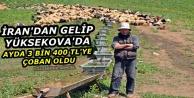 İran'dan gelip Yüksekova'da ayda 3 bin 400 TL'ye çoban oldu