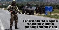 Lice'deki 14 köyde sokağa çıkma yasağı sona erdi