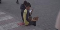 Suriyeli çocukların okuma azmi