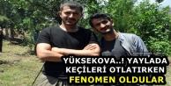 Yüksekova..! Yaylada Keçileri Otlatırken Fenomen Oldular