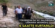 Yüksekova'da Ayı Saldırısına Uğrayan Vatandaş, 6 Saatte Kurtarıldı