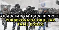 Yüksekova'da Taşımalı...