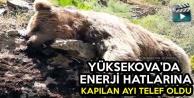 Yüksekova'da Elektrik...