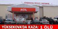 Yüksekova'da kaza:...