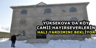 Yüksekova'da Köy Camii...