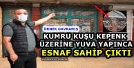 Yüksekova'da Kumru Kuşu Kepenk Üzerine Yuva Yapınca İlgi Odağı Oldu