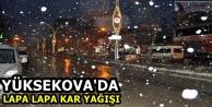 Yüksekova'da Lapa Lapa...