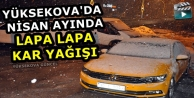 Yüksekova'da Nisan Ayında Lapa Lapa Kar Yağışı
