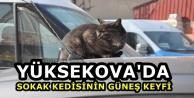 Yüksekova'da Sokak...