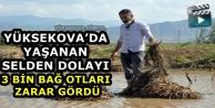 Yüksekova'da Yaşanan Selden Dolayı 3 Bin Bağ Otları Zarar Gördü