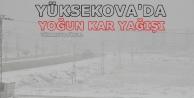Yüksekova'da Yoğun...