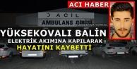 Yüksekovalı Balin'in Feci Ölümü