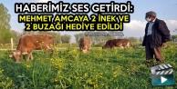 Haberimiz Ses Getirdi: Mehmet Amcaya 2 İnek Ve 2 Buzağı Hediye Edildi