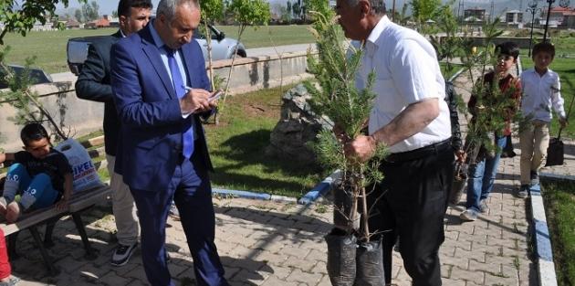 Yüksekova Belediyesi 13 Bin Fidan Dağıtacak