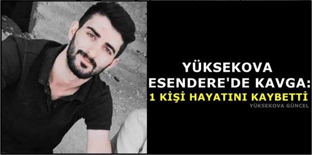 Yüksekova Esendere'de Kavga: 1 Kişi Hayatını Kaybetti