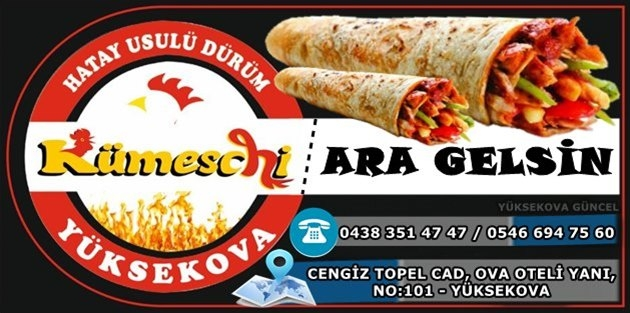 Yüksekova Kümesh Chicken - Hatay Usülü Tavuk Döner
