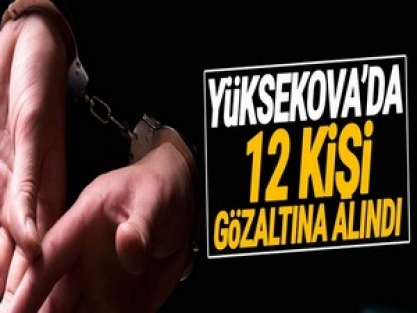Yüksekova'da 12 kişi gözaltına alındı
