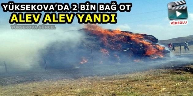 Yüksekova'da 2 Bin Bağ Ot Alev Alev Yandı